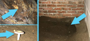 Problems in the Crawlspace